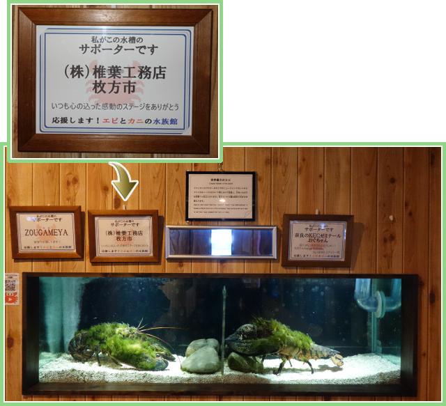 「エビとカニの水族館」のサポーター