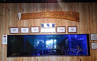 「エビとカニの水族館2」